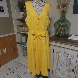Antonio Melani Sleeveless A-line Shirt Dress